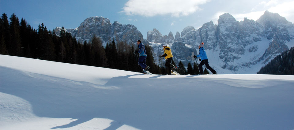Inverno in Val di Fiemme